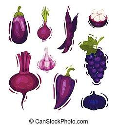 Un conjunto de varias verduras y frutas de color púrpura. Ilustración de vectores sobre fondo blanco.