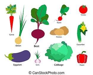 Un conjunto de vegetales en un fondo aislado blanco. Ilustración de vectores.