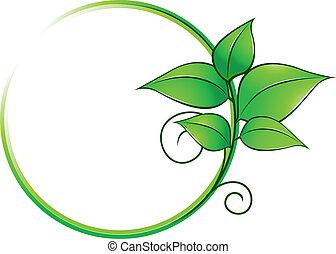 Un cuadro verde con hojas frescas