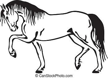 Un dibujo del vector de caballos