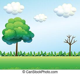 Un escenario verde