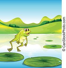Un estanque con una rana saltando