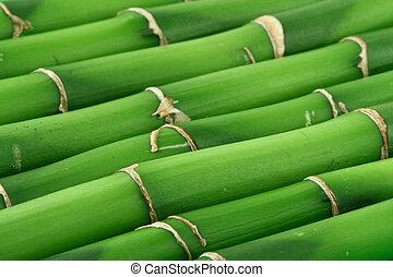 Un fondo de bambú