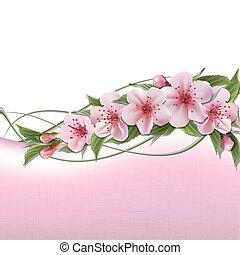 Un fondo de primavera con flores rosas de cereza