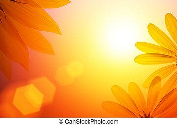Un fondo de sol con detalles de girasol.