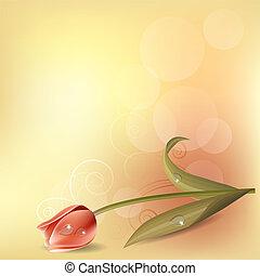 Un fondo liviano con tulipán rosa