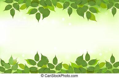 Un fondo natural con hojas verdes
