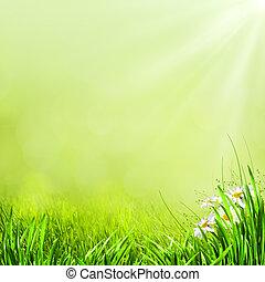 Un fondo natural de verano para tu diseño
