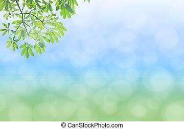 Un fondo verde natural con selec
