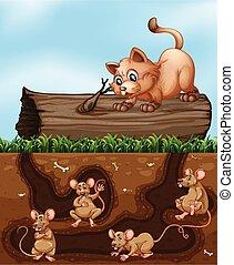 Un gato esperando a una rata en el hoyo