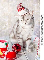 Un gracioso gato de Navidad con un sombrero de Santa en la cabeza y juguetes de Navidad.