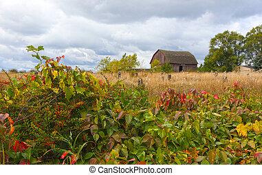 Un granero abandonado