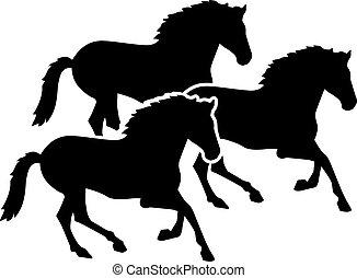 Un grupo de caballos corriendo