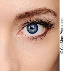 Un hermoso ojo de mujer azul con largas pestañas de salón
