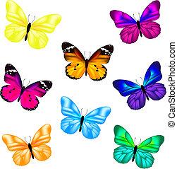 Un icono de mariposa