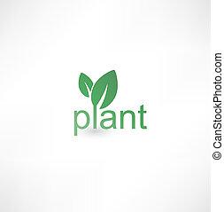 Un icono de plantas