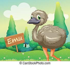 Un joven avestruz junto a un cartel de madera