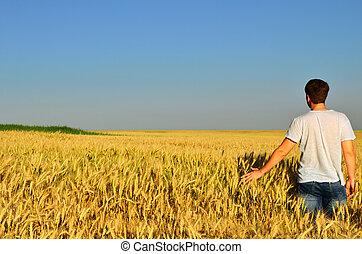 Un joven en un campo de cebada