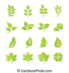 Un juego de iconos de hojas verdes