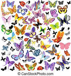 Un juego de mariquitas y mariposas