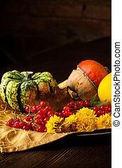 Un juego de otoño de vegetales de colores brillantes. Preparándome para Halloween
