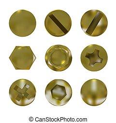 Un juego de tornillos dorados de metal y vector de pernos