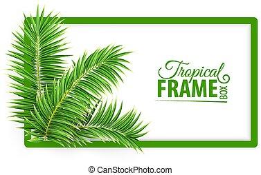 Un marco tropical. Diseño de diseño. Hojas de palma verde. Vector.