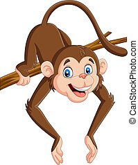 Un mono gracioso en una rama de árbol