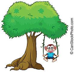 Un mono jugando al swing en el árbol