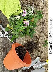 Un montón de hierbas frescas y herramientas de jardín sobre fondo de madera