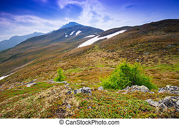 Un paisaje alpino