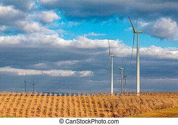 Un paisaje de campo de trigo