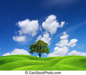 Un paisaje de naturaleza verde