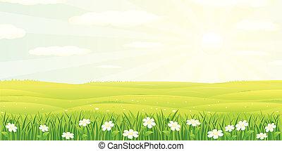 Un paisaje hermoso