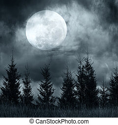 Un paisaje mágico con bosques de pinos bajo un cielo dramático y nublado