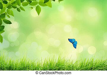 Un paisaje natural con hierba
