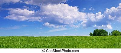 Un paisaje panorámico