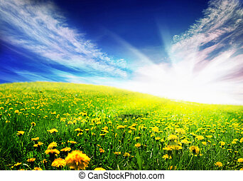 Un paisaje primaveral