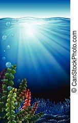 Un paisaje submarino
