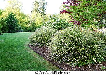 Un paisaje verde en el patio trasero con grandes arbustos de hierba.