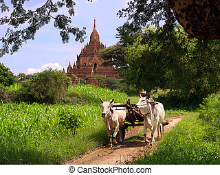 Un paisaje vintage de Myanmar