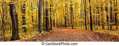 Un panorama de otoño