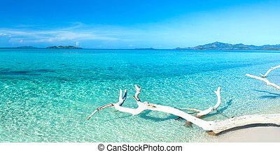 Un panorama de playa tropical