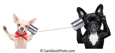 Un par de perros al teléfono