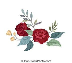 Un par de rosas burdeos. Ilustración de vectores en un fondo blanco.