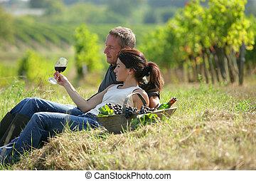 Un par de sabores de vino en un viñedo
