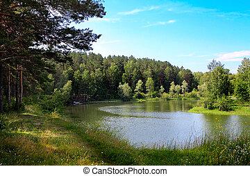 Un pequeño paisaje de la naturaleza del río