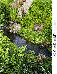 Un pequeño río rápido