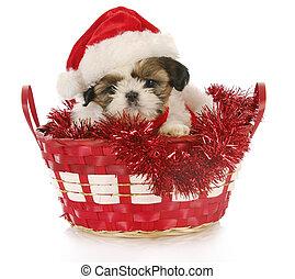 Un perrito de Navidad
