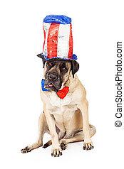 Un perro mastín el día de la independencia